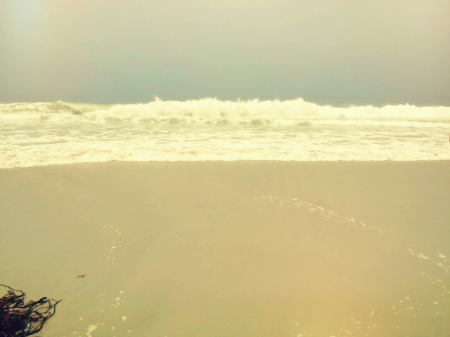 Beach Ocean California Carmel Monterey Bay Surf Swim Pebble Beach