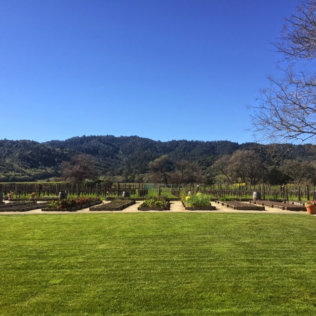Valentine's day brunch, gardens, gardens of napa, napa weather, wine country weather
